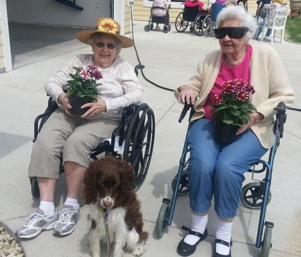 Potted Plants Amp Puppies Elder Care Cottages Of Wisconsin